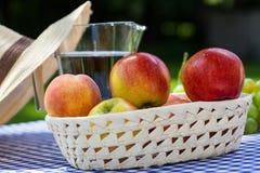 Cesta con las manzanas Fotografía de archivo