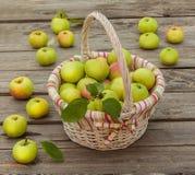 Cesta con las manzanas en un fondo de madera Fotos de archivo libres de regalías