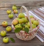 Cesta con las manzanas en un fondo de madera Fotos de archivo