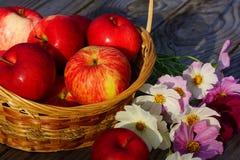 Cesta con las manzanas en una tabla de madera Fotografía de archivo
