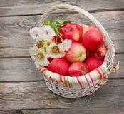 Cesta con las manzanas y el manojo de zinnia Fotografía de archivo libre de regalías