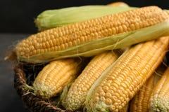 Cesta con las mazorcas de maíz dulce sabrosas, primer foto de archivo libre de regalías