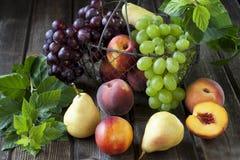 Cesta con las nectarinas, los melocotones, la uva y las peras Foto de archivo