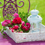 Cesta con las rosas fotos de archivo libres de regalías