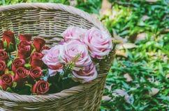 Cesta con las rosas rojas y las rosas rosadas en un fondo de la hierba Fotos de archivo libres de regalías