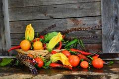 Cesta con las verduras Imagen de archivo