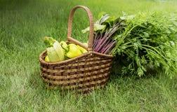 Cesta con las verduras frescas 2 Imágenes de archivo libres de regalías