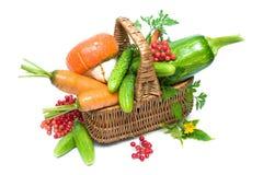 Cesta con las verduras y el viburnum maduro de las bayas en una parte posterior del blanco Imagen de archivo libre de regalías