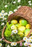 Cesta con los huevos de Pascua en un prado de las flores Fotos de archivo