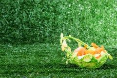 Cesta con los huevos en hierba Fotografía de archivo