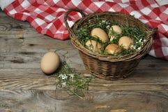 Cesta con los huevos frescos Fotografía de archivo