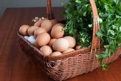 Cesta con los huevos y las hierbas frescos Fotografía de archivo libre de regalías