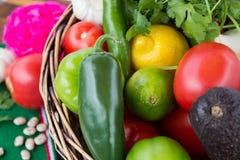 Cesta con los ingredientes coloridos Imagenes de archivo