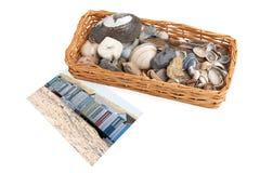 Cesta con los seashells y los guijarros Imagen de archivo libre de regalías
