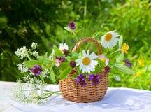 Cesta con los wildflowers Foto de archivo libre de regalías