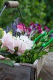 Cesta da flor Imagem de Stock
