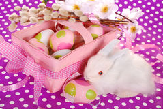 Cesta da Páscoa com ovos e o coelho branco Foto de Stock
