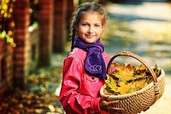 Cesta das folhas Foto de Stock
