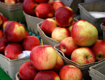 Cesta das maçãs Fotografia de Stock