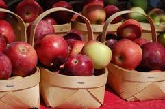 Cesta das maçãs Fotos de Stock