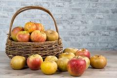 Cesta das maçãs na tabela de madeira Imagens de Stock Royalty Free