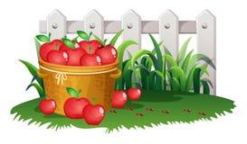 Cesta das maçãs no jardim ilustração do vetor