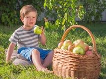 A cesta das maçãs próximo caçoa Bebê que come a maçã exterior foto de stock royalty free