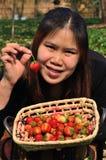 A cesta das morangos na mão Fotografia de Stock Royalty Free