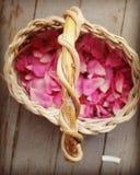 Cesta das pétalas da flor fotos de stock