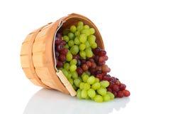 Cesta das uvas em seu lado Imagens de Stock Royalty Free