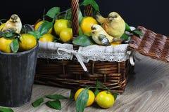 Cesta de Año Nuevo de los mandarines Imagenes de archivo