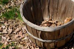 Cesta de celemín con las hojas Foto de archivo libre de regalías