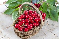 Cesta de cerejas vermelhas Fotografia de Stock Royalty Free