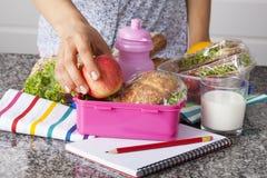 Cesta de comida da escola imagens de stock