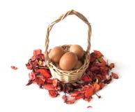 Cesta de Easter com ovos Fotografia de Stock Royalty Free