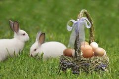 Cesta de Easter e o coelhinho da Páscoa fotografia de stock