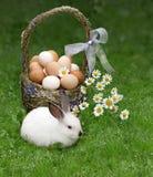 Cesta de Easter e o coelhinho da Páscoa imagens de stock royalty free