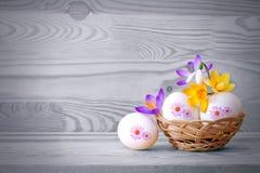 Cesta de Easter isolada Fotos de Stock Royalty Free