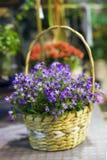 Cesta de flores fotos de archivo