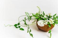 Cesta de flores blancas Imagen de archivo libre de regalías