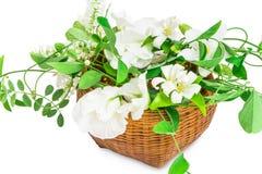 Cesta de flores blancas Imagen de archivo