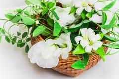 Cesta de flores blancas Fotografía de archivo libre de regalías