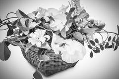 Cesta de flores blancas Fotos de archivo libres de regalías