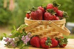 Cesta de fresas Imagenes de archivo