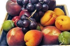 Cesta de fruta aislada Fotos de archivo