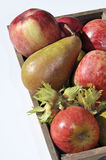 Cesta de fruta estacional Fotos de archivo