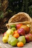 Cesta de frutas Fotografía de archivo libre de regalías