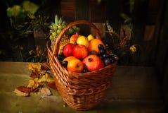 Cesta de fruto Fotos de Stock Royalty Free