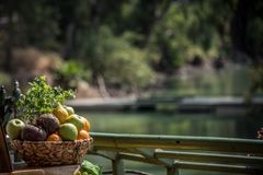 Cesta de fruto Foto de Stock