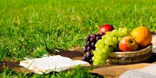 Cesta de fruto e um livro em um gramado verde para relaxar foto de stock